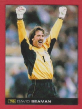Arsenal David Seaman England